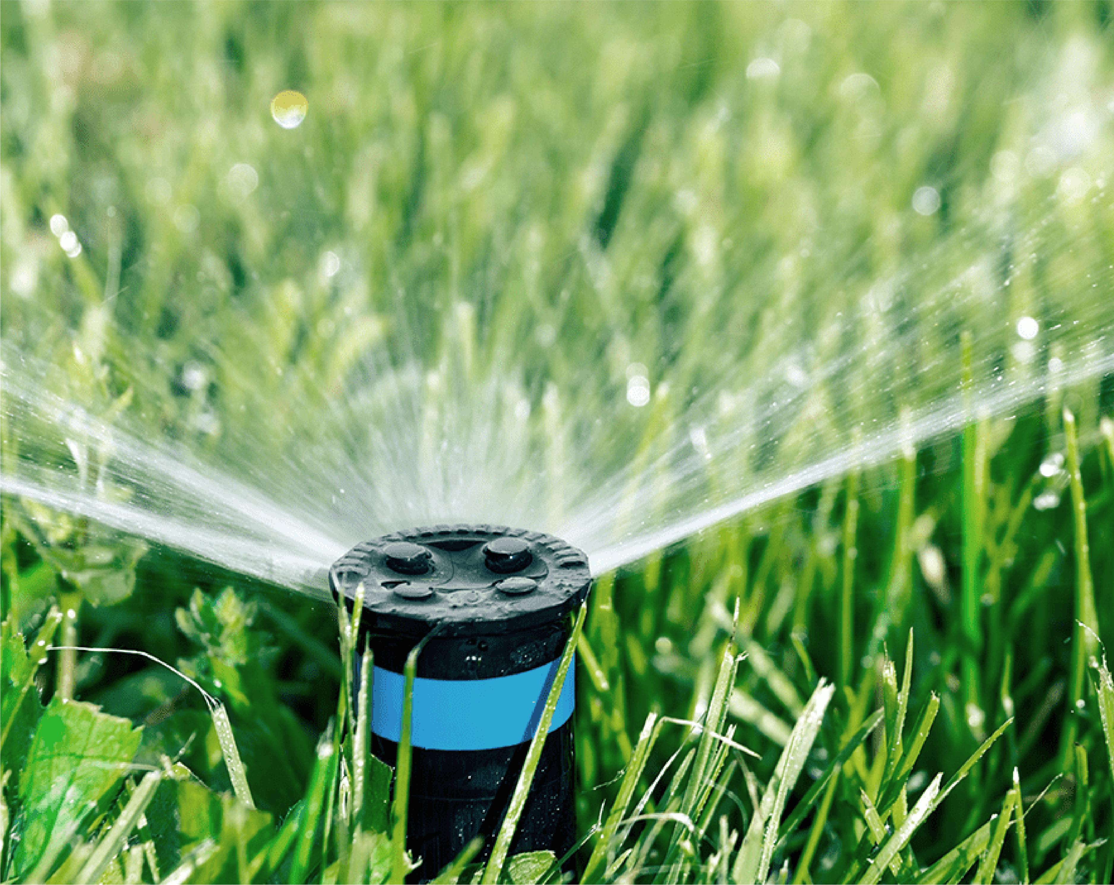 Sprinkler Nozzle Rebates from SoCal Water$mart